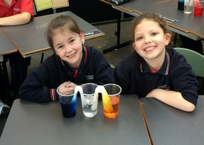 Chemical Science in Year 2